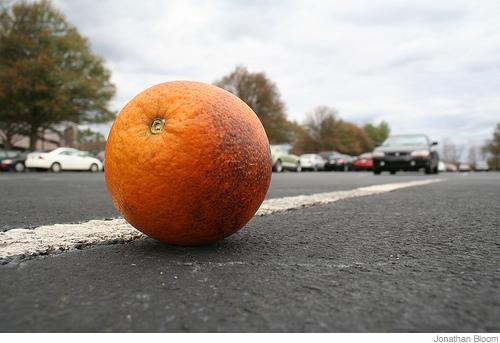 OrangeJonathanBloom